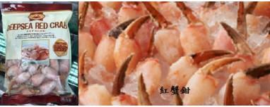 日本熟松葉蟹鉗